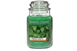 Świeca Yankee Candle Fresh Mint